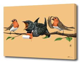 Cock Robin (colour)