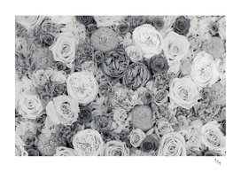 bouquet ver.b&w