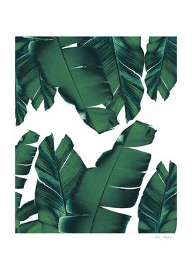 Banana Leaves Tropical Vibes #5 #foliage #decor #art