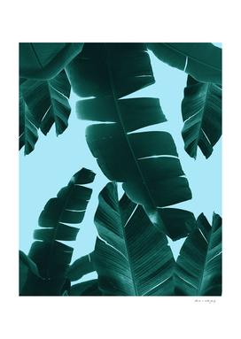 Banana Leaves Summer Vibes #3 #tropical #decor #art