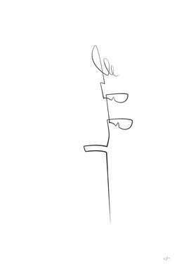 CARLO IX scroll