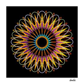 Geometric Mandala representing the universe