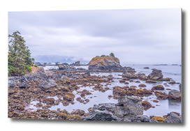 Northern Rocks