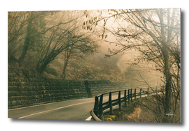 Foggy Tuscany Empty Highway