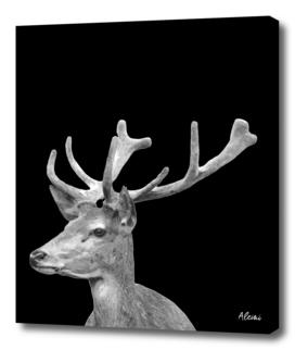 Deer Black