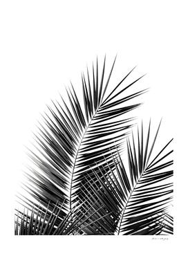 Black Palm Leaves Dream - Cali Summer Vibes #1 #tropical