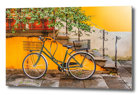 Bicycle Parked at Wall in Lucca City Italy
