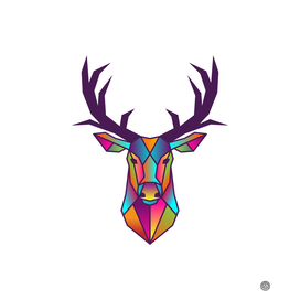 Deer | Colorful Wild Life Animals