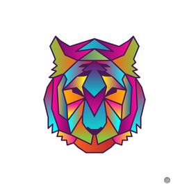 Tiger | Colorful Wild Life Animals
