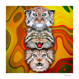 Trio cats art poster