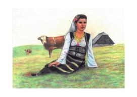Serbian girl with bulls