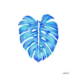 Blue Monstera Leaf Watercolor
