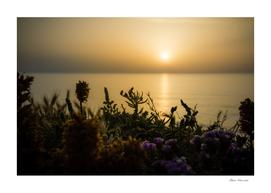 Serene golden sunset over the sea