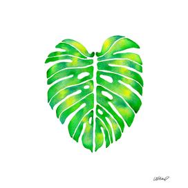 Monstera Leaf Watercolor