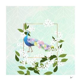 Peacock Hydrangeas
