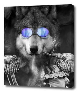 Wolf. Kings series.