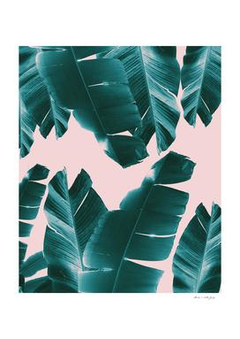 Banana Leaves Tropical Vibes #1 #foliage #decor #art