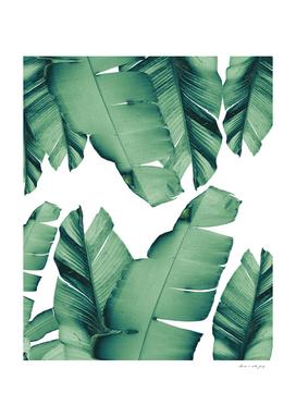 Banana Leaves Tropical Vibes #4 #foliage #decor #art