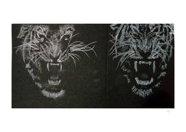 6b - Tiger - Pencil & Pastel