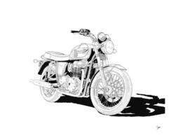 2006-Triumph-BonnevilleT100d