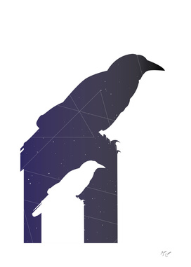Crow Math
