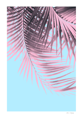 Palm Leaves Summer Vibes #7 #tropical #decor #art