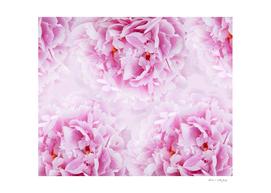 Pink Peonies Dream #1 #floral #decor #art