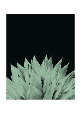 Agave Dark Night Vibes #1 #tropical #decor #art