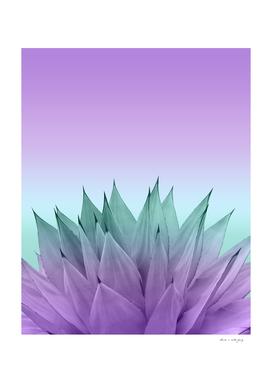 Agave Vibes #7 #tropical #decor #art