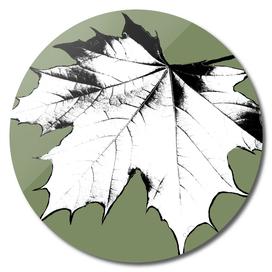 Changeling Leaf