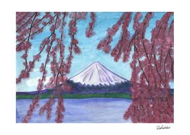 Flowering sakura against the background of Mount Fuji
