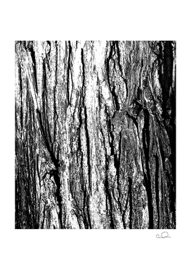 Tree Bark Silver