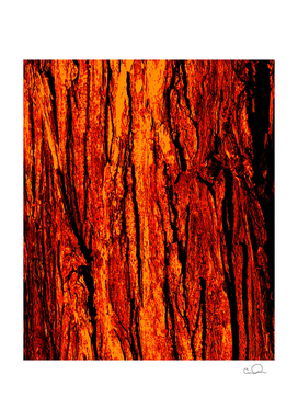Tree Bark Red