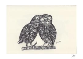 BALLPEN OWLS 2