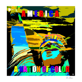 America A Nation of Color