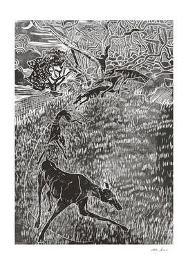 wistman wood devils hounds