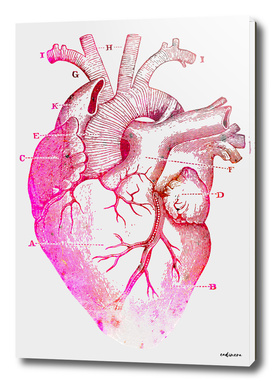 The Anatomy of My Heart #buyart #curioos #wall #art