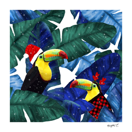 Holidays Tropical Toucan In The Snow