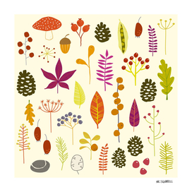 Autumn Fall Forest Woodland Nature Bits