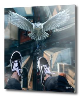 White Owl between skycrapers by GEN Z
