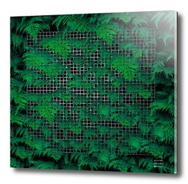 Dark & Vibrant Fern Grid