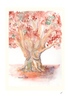 Fall tree - fine art by Serely