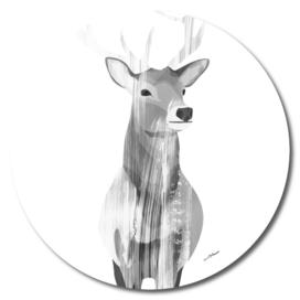 Deer (black and white)