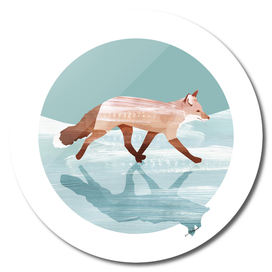 Run foxy run