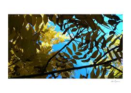 Autumnal golden hues III