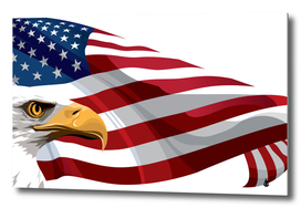 Flag of the United States American Flag and Eagle