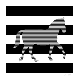 Horse - strips - black and white