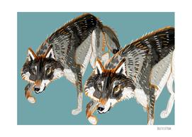 Totem Dark European wolves