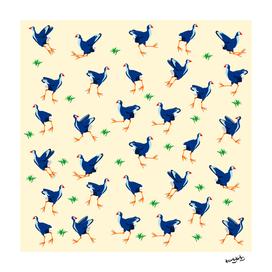 Pukeko Pattern