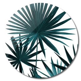 Fan Palm Leaves Jungle #1 #tropical #decor #art
